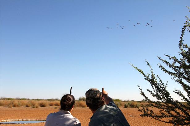 aru-upcoming-trip-activities-wing-shooting
