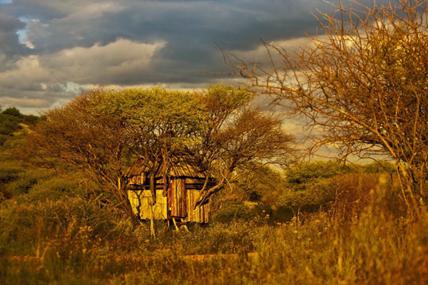Bow Hunting Hideouts in Namibia