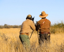 YWH walk & stalk springbok culling trip to ARU Game Lodges in Namibia: True African hunting from a different perspective